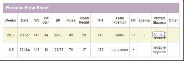 Prenatal Flow Sheet